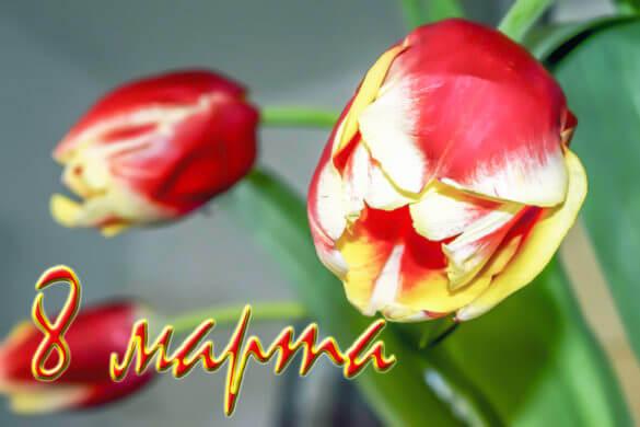 Поздравляем вас с прекрасным весенним праздником днем 8 марта!